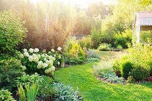 Никаких покрышек: 6 идей для оформления сада с заботой о природе