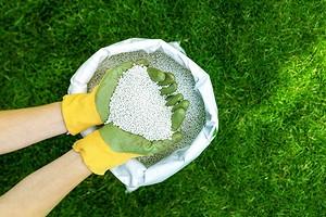 Как использовать мочевину на огороде весной: 4 способа применения удобрения