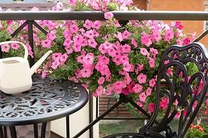 Как озеленить старый балкон: 6 красивых идей, которые не нагрузят перекрытие