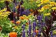 8 токсичных садовых растений (будьте с ними осторожны)