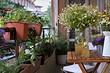 8 самых красивых садиков на балконе (вы вдохновитесь)