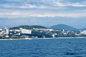 Исследование: спрос на курортные коттеджи России вырос на 20%