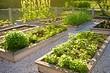 6 советов по оформлению сада на участке, где регулярно нет воды