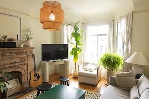 Во что поставить растение: 8 разных идей для оформления комнатных кашпо