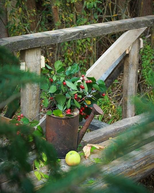 6 классных идей для вашего сада, которые редко применяют в России (присмотритесь!)