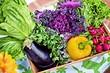 6 ошибок в хранении сезонного урожая, которые сведут на нет ваши усилия