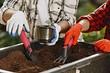 7 причин начать готовить компост на даче (если вы еще этого не делаете)