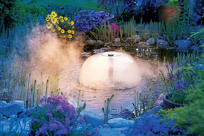 Волшебный пруд