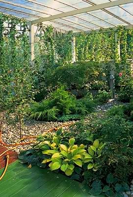 Сад, который живет на крыше