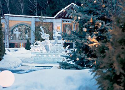Ледяная фантазия в зимнем саду