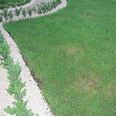 Скорая помощь для газона (Свой Дом №5 2007 стр.71)