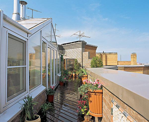 Заселение крыши