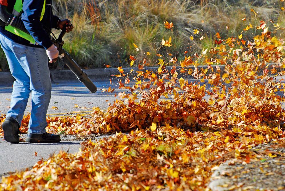 Садовый пылесос или воздуходувка: как выбрать и не прогадать