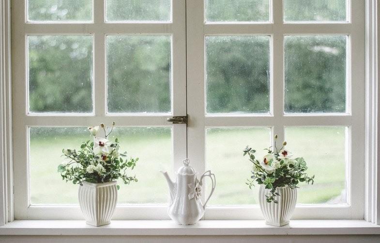 Тест: Какие растения подойдут вашему интерьеру?