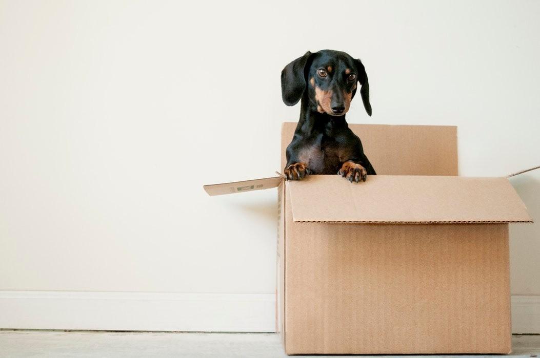Переезд - как организовать его правильно