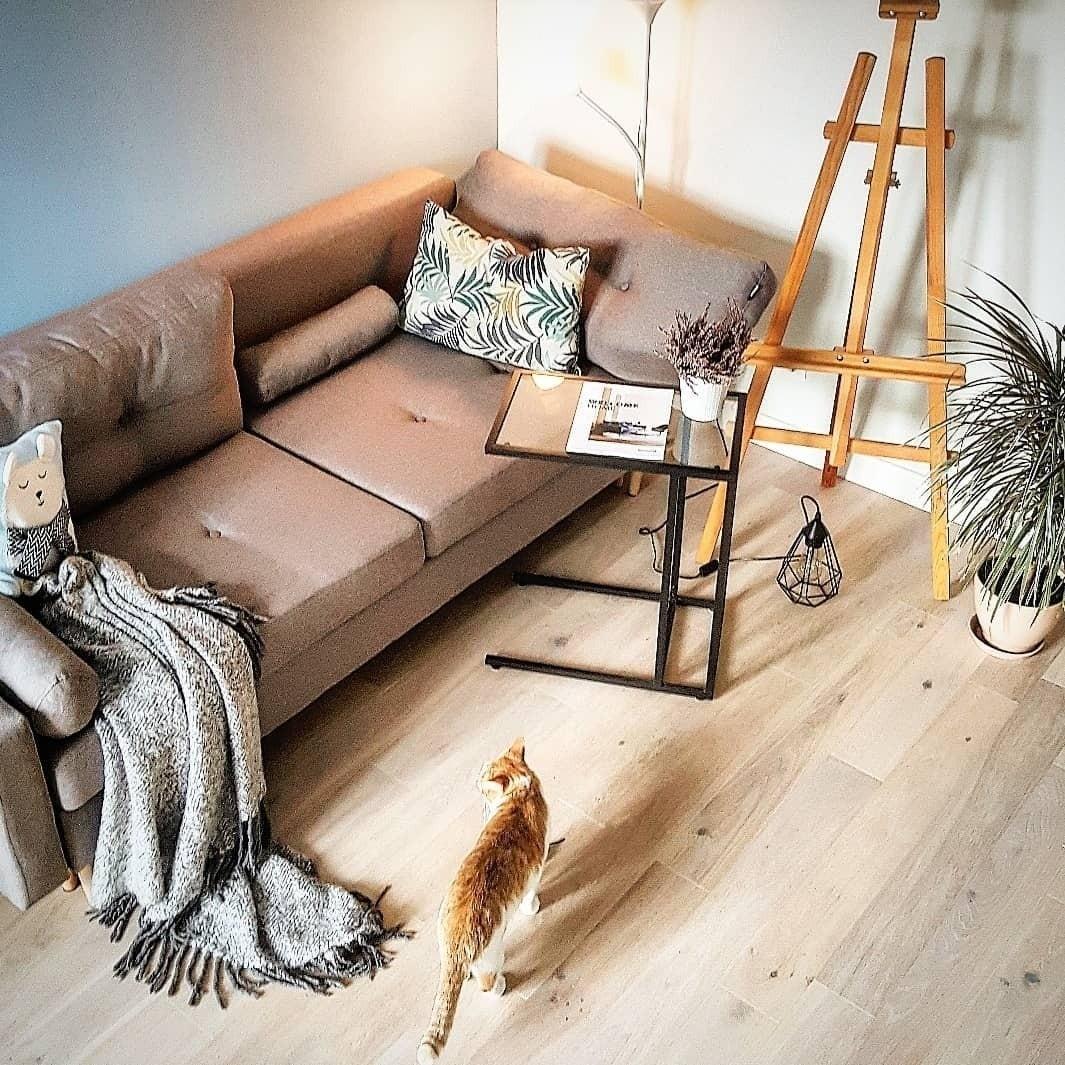 Очистка кожаного дивана