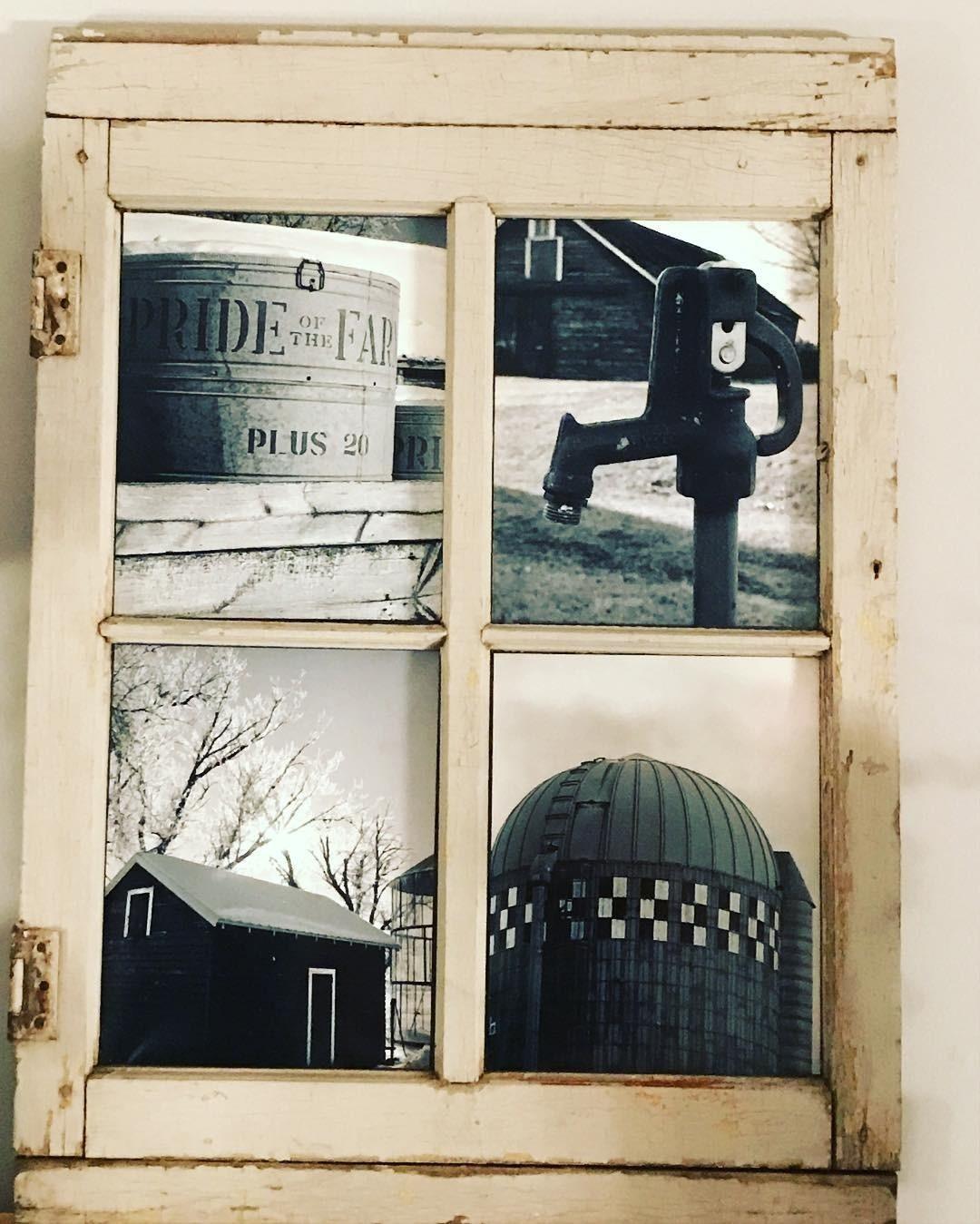 Фото: Instagram mollieverdickphotography