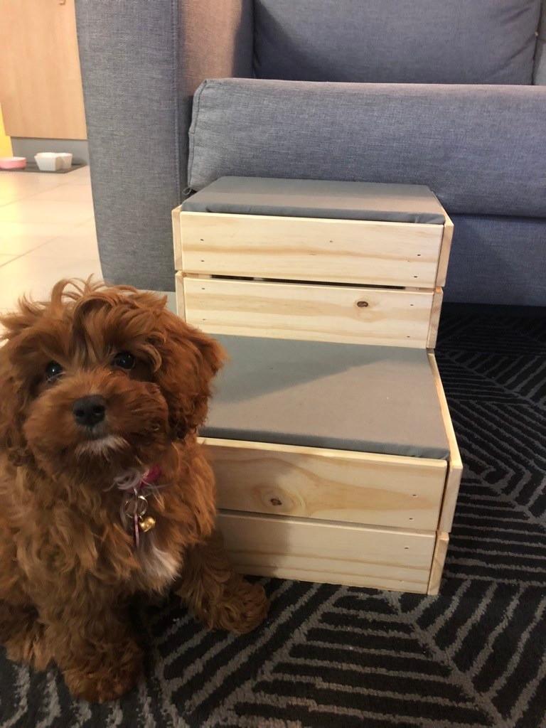 Фото: ikeahackers.net