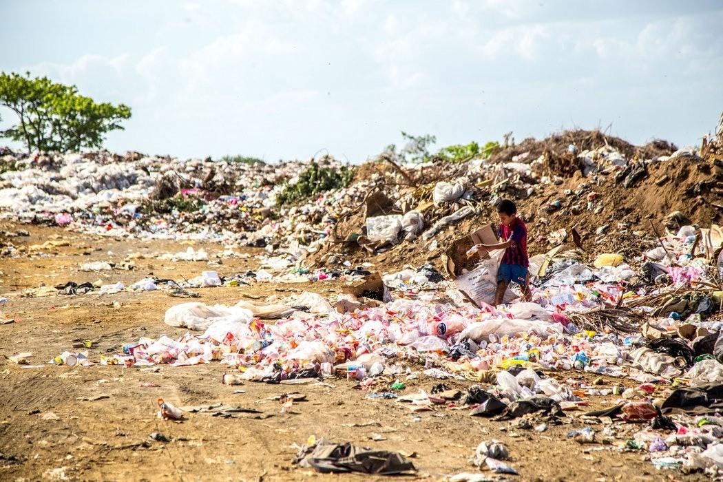 Как правильно сортировать мусор и утилизировать его, если вы живете в России