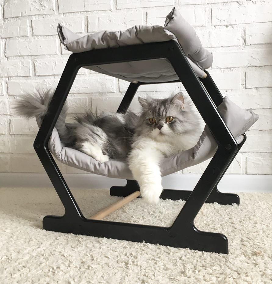 Instagram catmark.ru