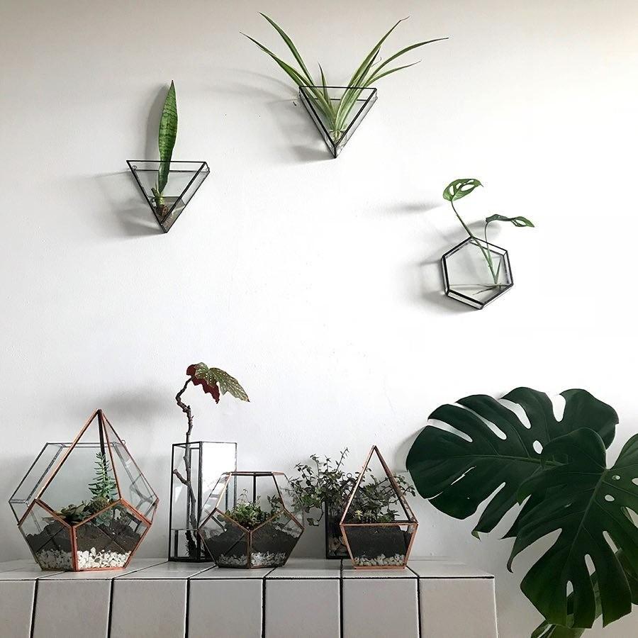 Фото: Instagram cuttheglass