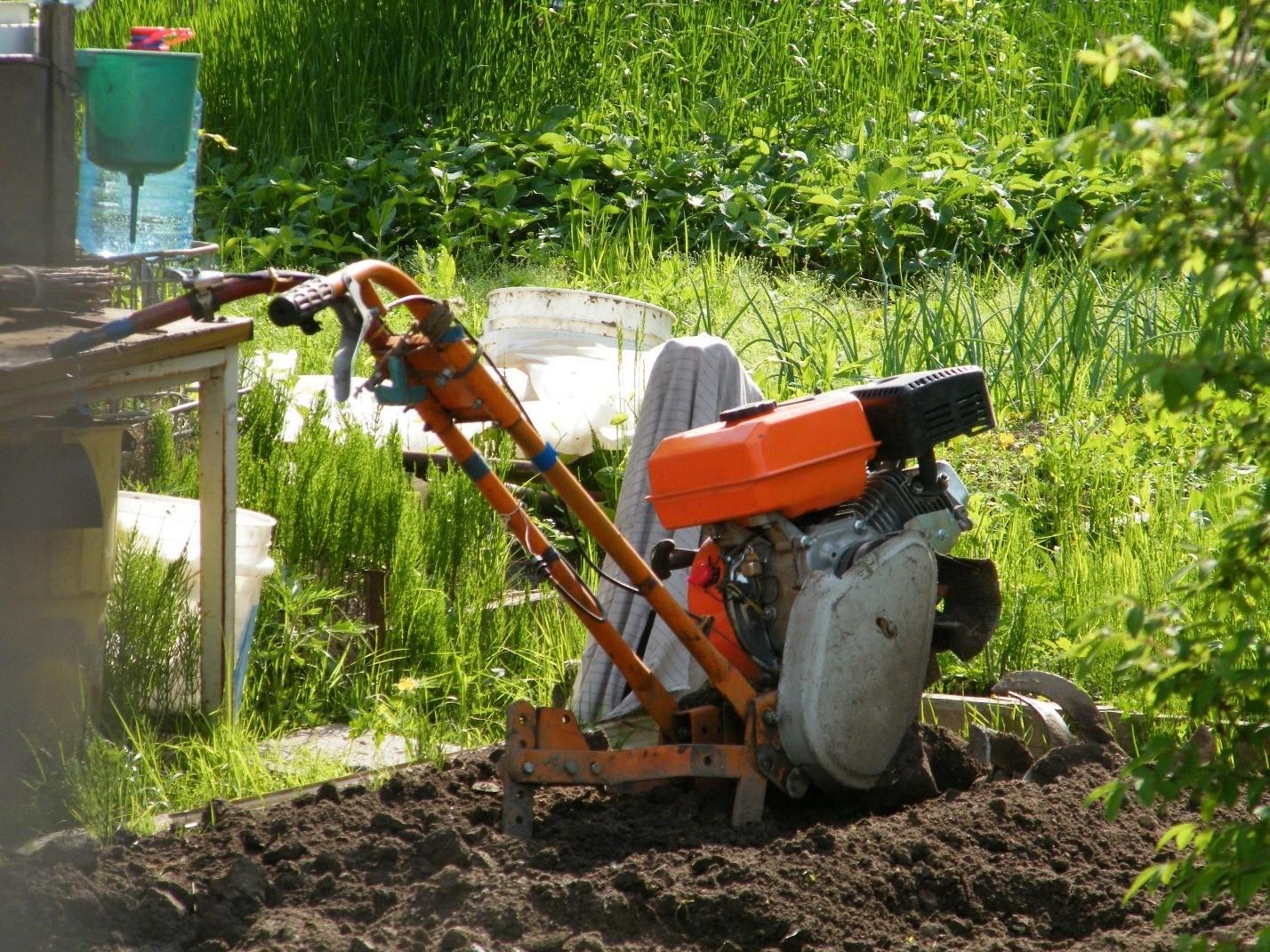 Гид по маслам для садовой техники