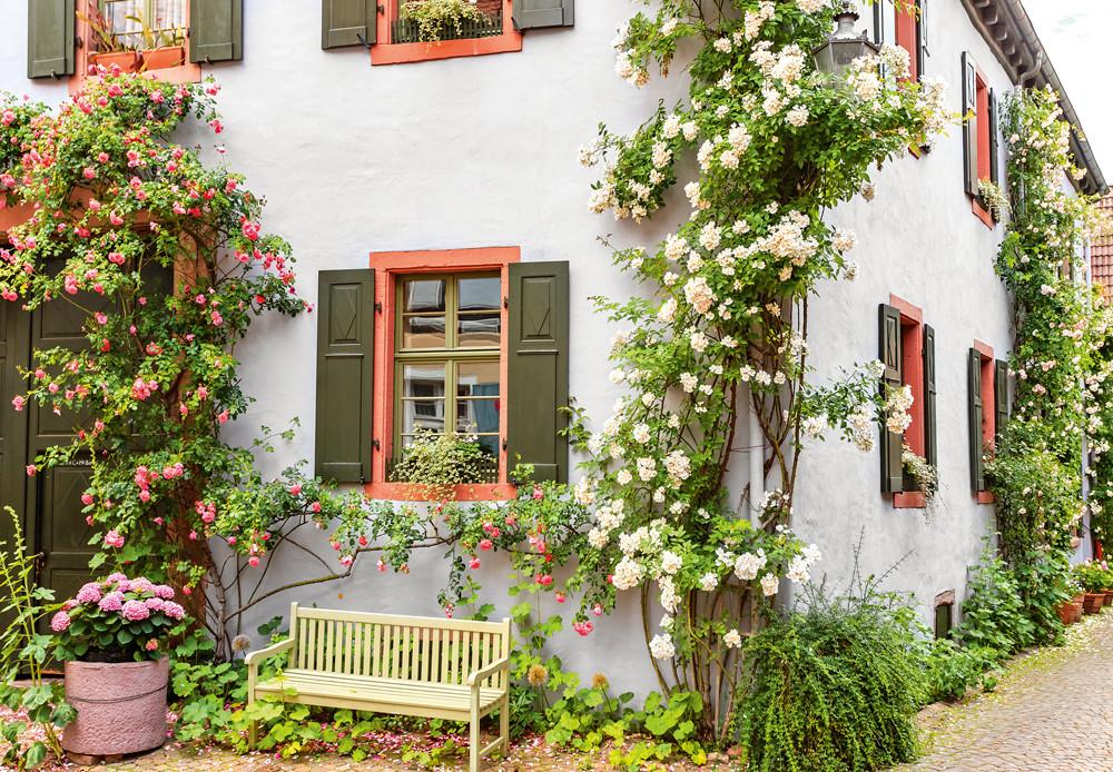 Фасадные штукатурки для загородного дома: какими они бывают и как с ними работать