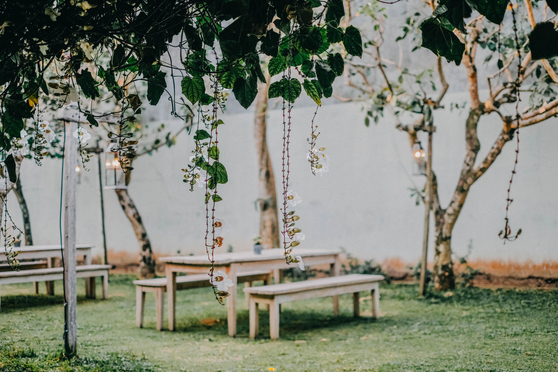 Создаем сад в скандинавском стиле: 12 доступных приемов