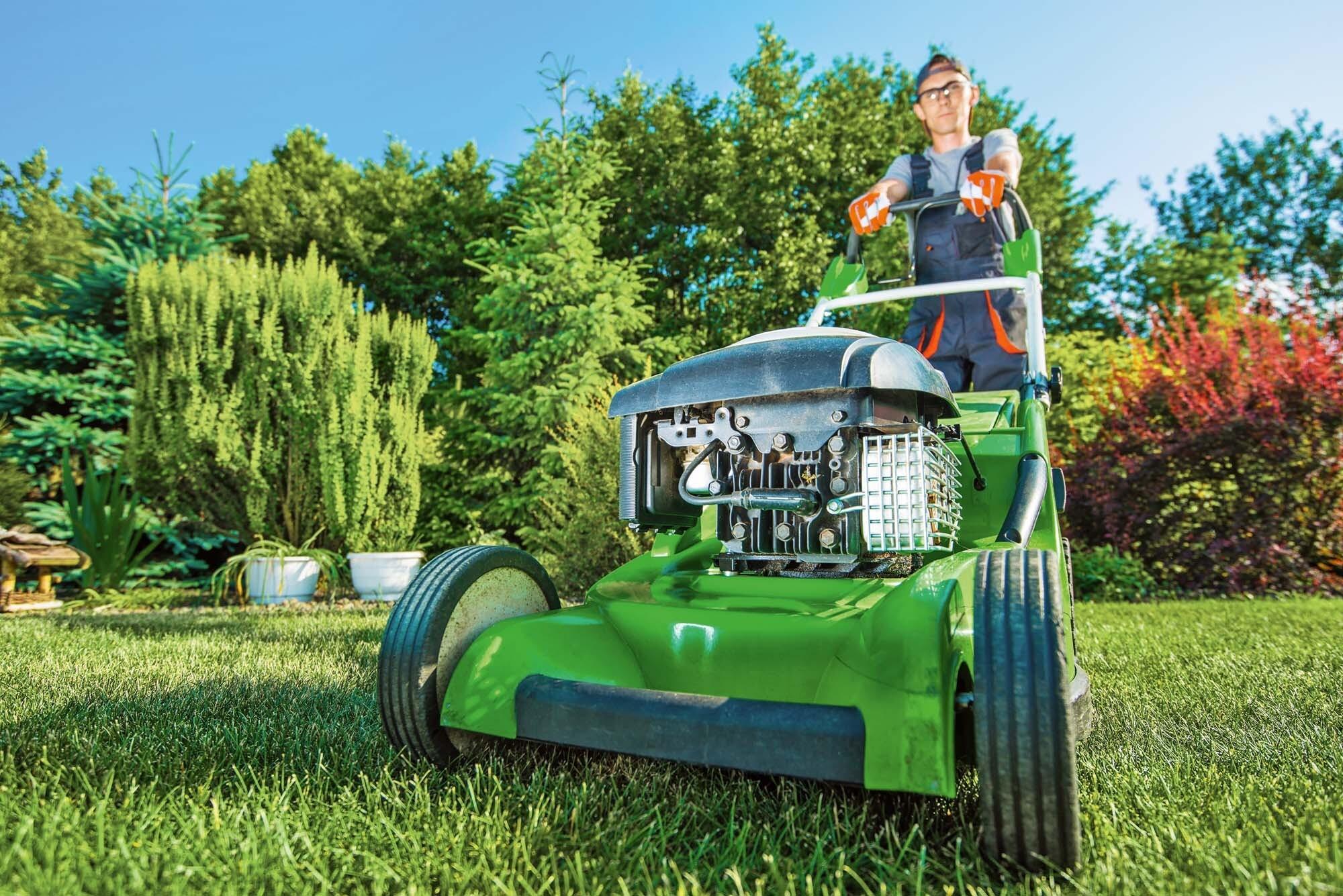 Как выбрать газонокосилку: разбираемся в видах и функциях устройства
