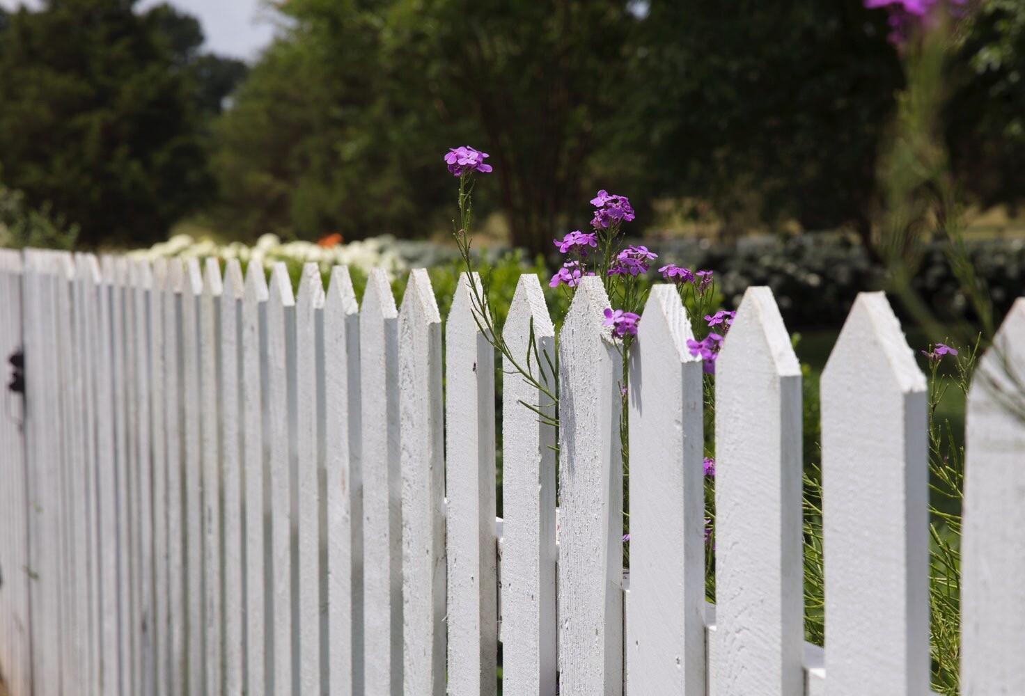 Вместо забора: 7 способов сделать дачный участок более приватным