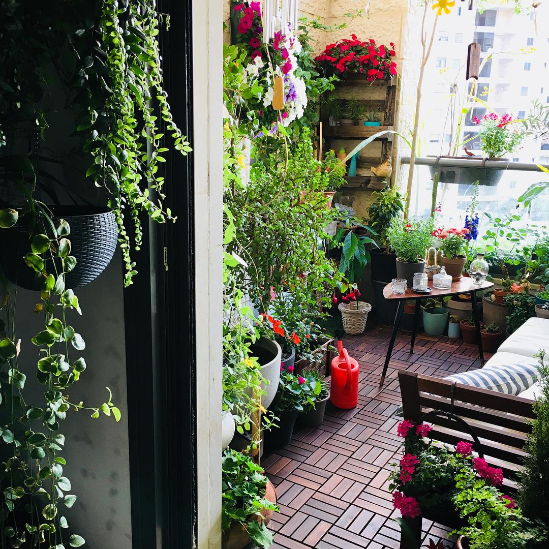 Маленький стильный огород на городском балконе: фото