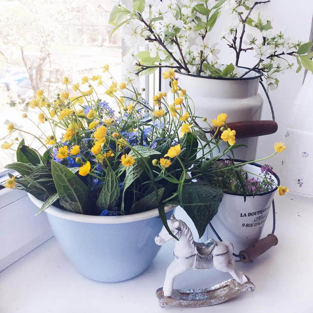 Живые растения как декор даче