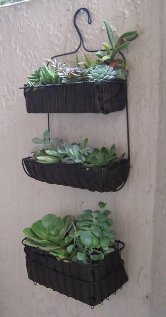Бюджетные способы озеленить балкон