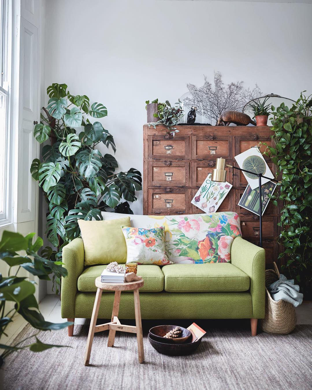 Комнатные растения в интерьере дачи: фото