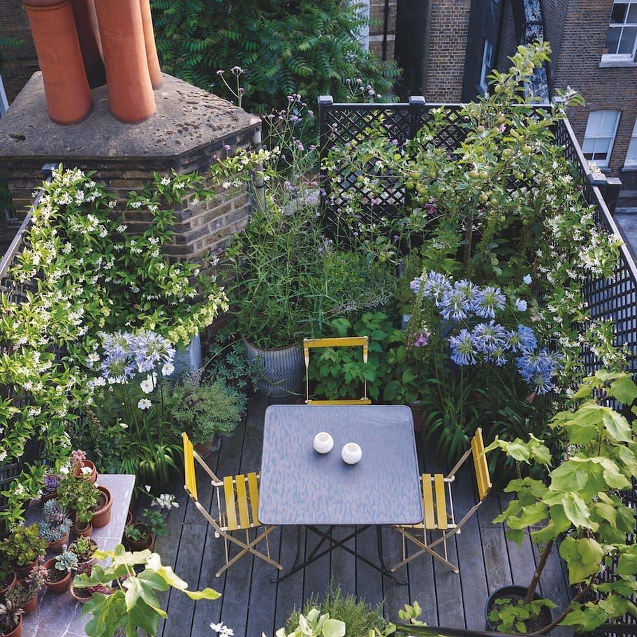 Мини-сад в городе фото