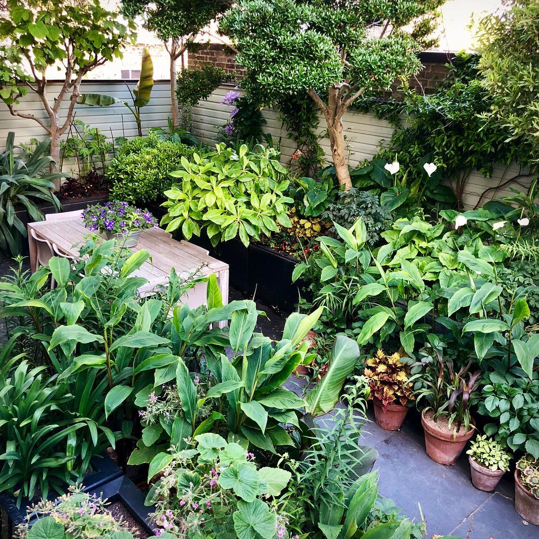 Сад с оранжереей фото